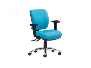 Anatome ErgoS Ergonomic Office Chair