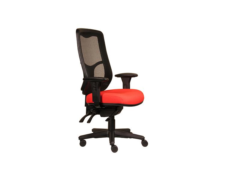 Swift Mesh Ergonomic Office Chair